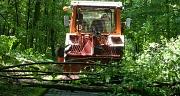 Das Foto zeigt einen Schlepper, der im Rückwärtsgang die zurecht gesägten Aststücke einer Baumkrone an den Wegrand schiebt.
