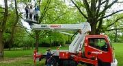 Das Foto zeigt einen Hubsteiger, mit dem zwei Mädchen in eine Baumkrone hoch gefahren werden.